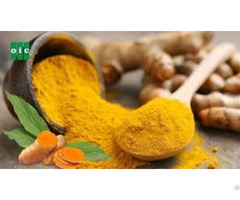 Vietnam Turmeric Powder