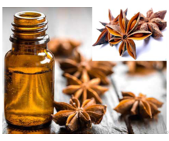 Vietnam Star Anise Oil