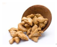 Ginger Vdelta Exporters