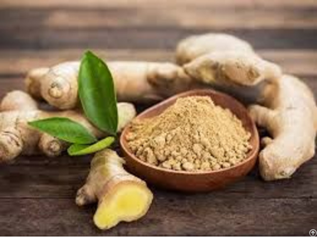 Spices Ginger Exporters