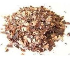 Silk Shell Cashews