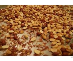Vietnam Peanut Shells