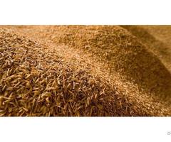 Rice Husk Pellet