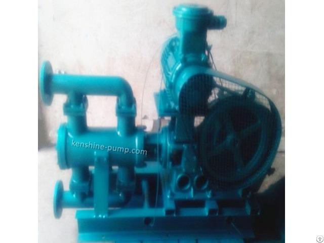 Wb Wbr Electric Reciprocating Pump