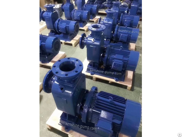 Zwl Self Priming Trash Pump