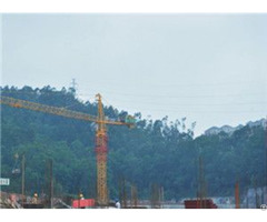 Qtz100 Tc6513 Trustworthy Self Erecting Fixed Hydraulic Construction Building Tower Crane