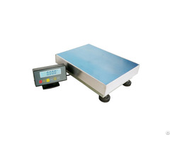 Precision Weighing Platform Scale 1g