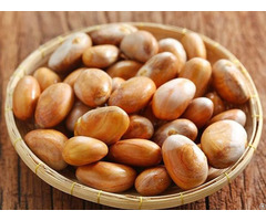 Jack Fruit Seed Powder