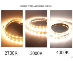 Led High Brightness And Ra 5050 Bare Board Low Voltage Light Strip Wholesale