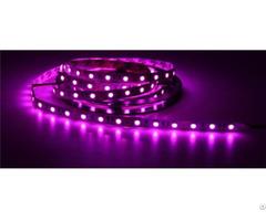 China High Quality Wedding Bar Ktv Decoration 5050led Pink Light Strip