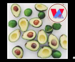 Vietnam Avocado Seed