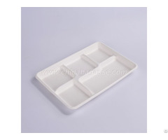 White 5 Com Bagasse Tray