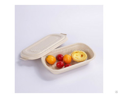 Eco Friendly 750ml Disposable Bagasse Container