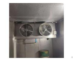 Blast Durian Cold Storage